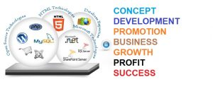 Web Development in Dot Net In Delhi