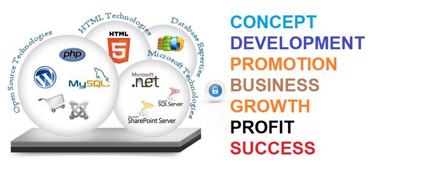 Web Development In Delhi