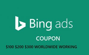 Bing Ads Coupon $100